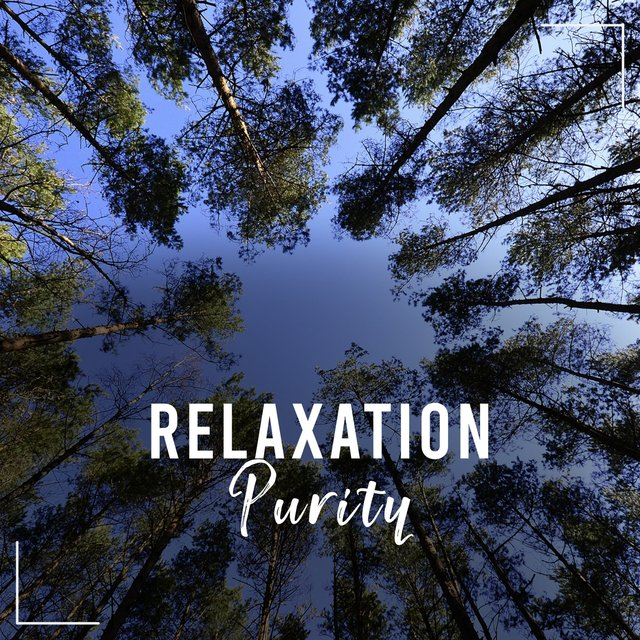 #Relaxation Purity