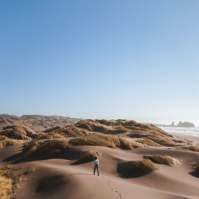 Asleep in the Dunes | Sleep Music