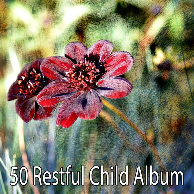 50 Restful Child Album