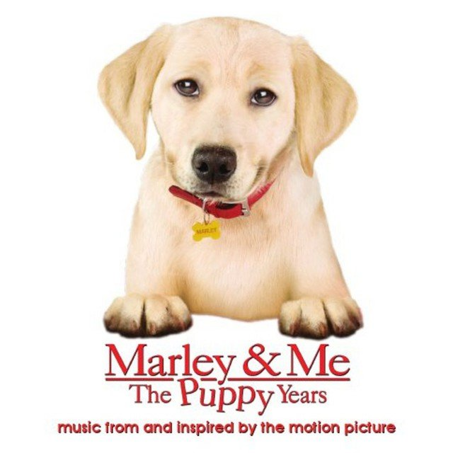 Marley & Me The Puppy Years music from and inspired by the motion picture