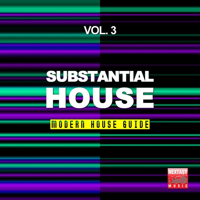 Substantial House, Vol. 3 (Modern House Guide)
