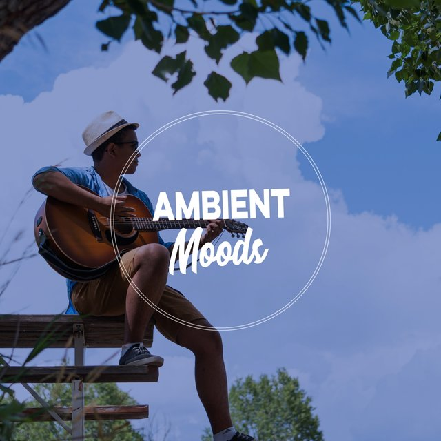 Mexican Latin Ambient Moods