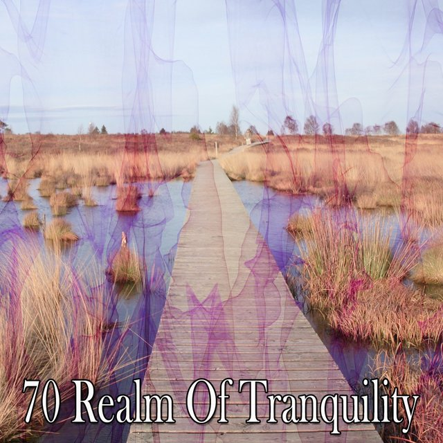70 Realm of Tranquility