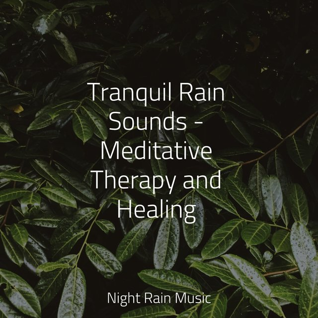 Tranquil Rain Sounds - Meditative Therapy and Healing