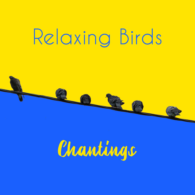 Relaxing Birds Chantings - Collection of Beautiful Nature Sounds