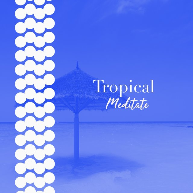 # 1 A 2019 Album: Tropical Meditate