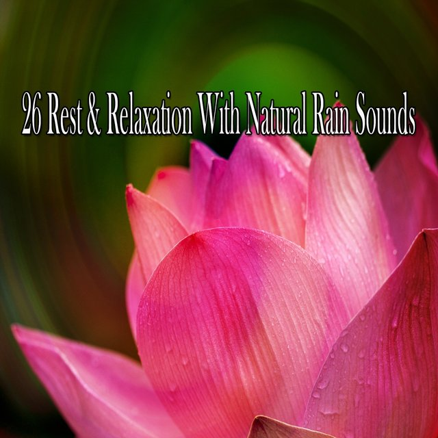 26 Rest & Relaxation with Natural Rain Sounds