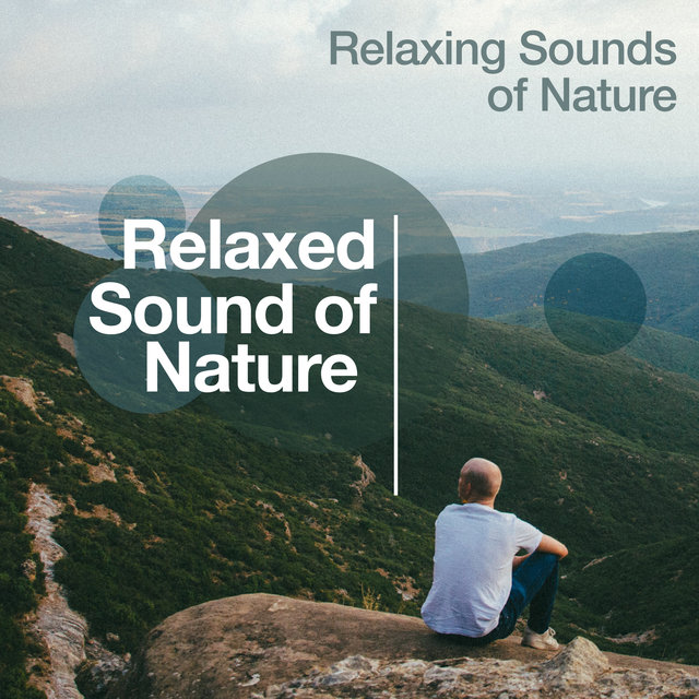 Relaxed Sound of Nature