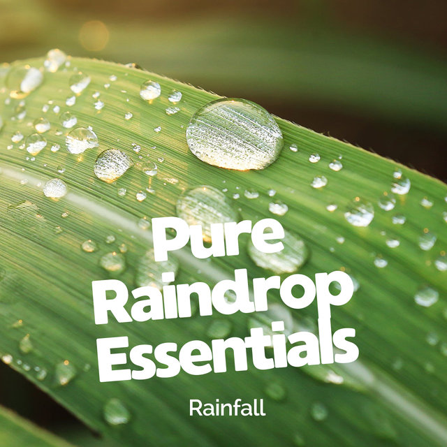 Pure Raindrop Essentials