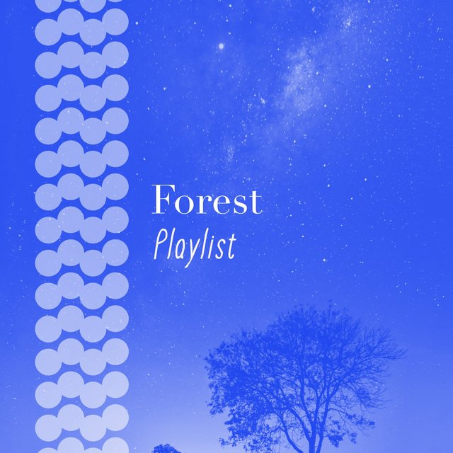 Peaceful Garden Forest Playlist