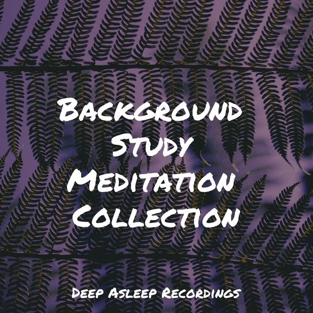 Background Study Meditation Collection