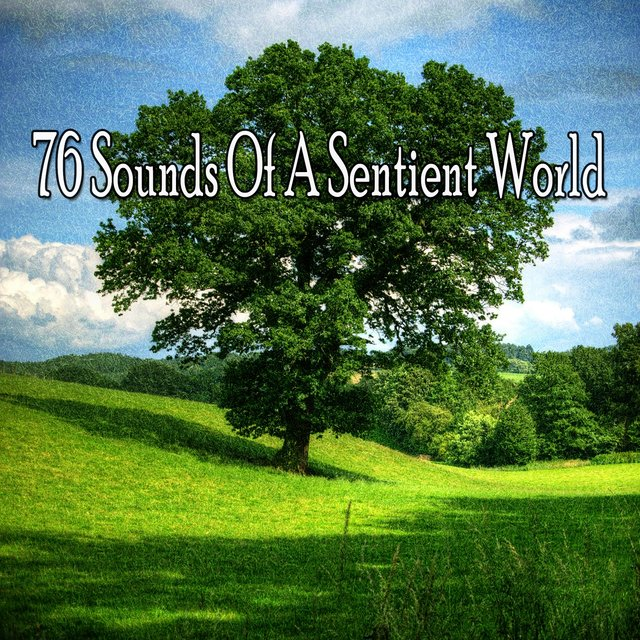 76 Sounds of a Sentient World