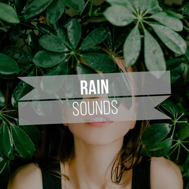 Soft Rain Sleep Sounds