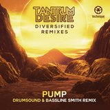 Pump (Drumsound & Bassline Smith Remix)