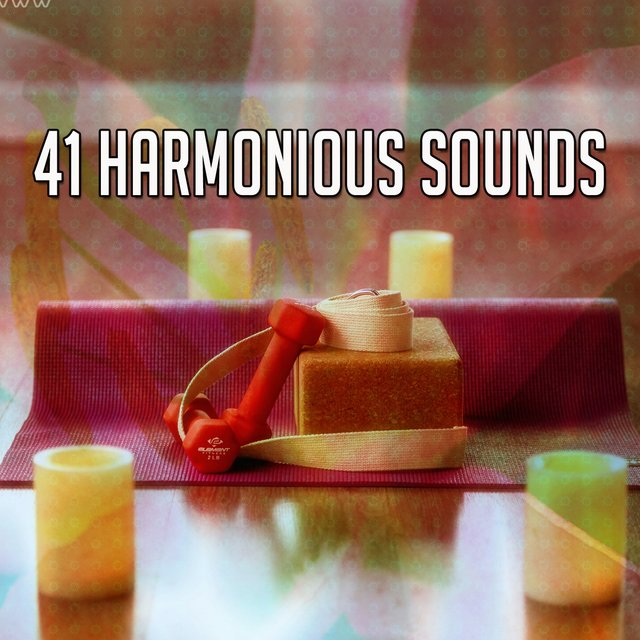 41 Harmonious Sounds
