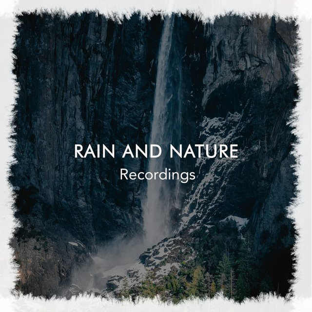 Gentle International Rain and Nature Recordings