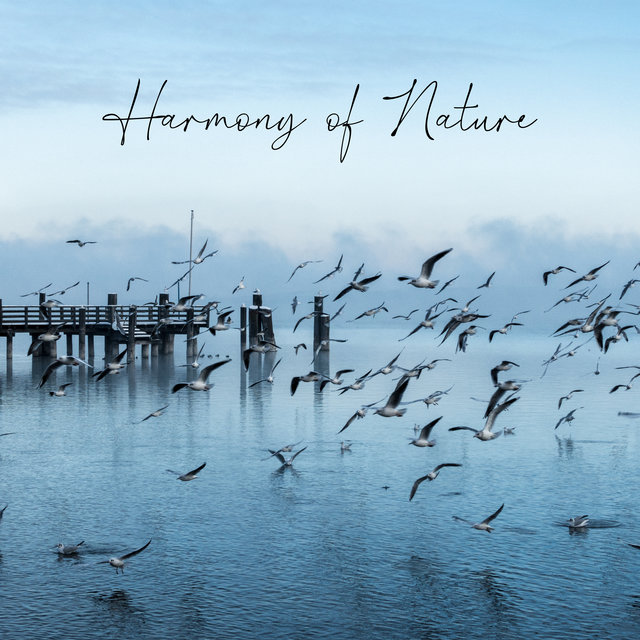 Harmony of Nature – Healing Whispers of Relax
