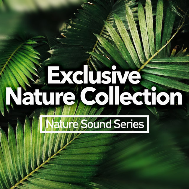 Exclusive Nature Collection