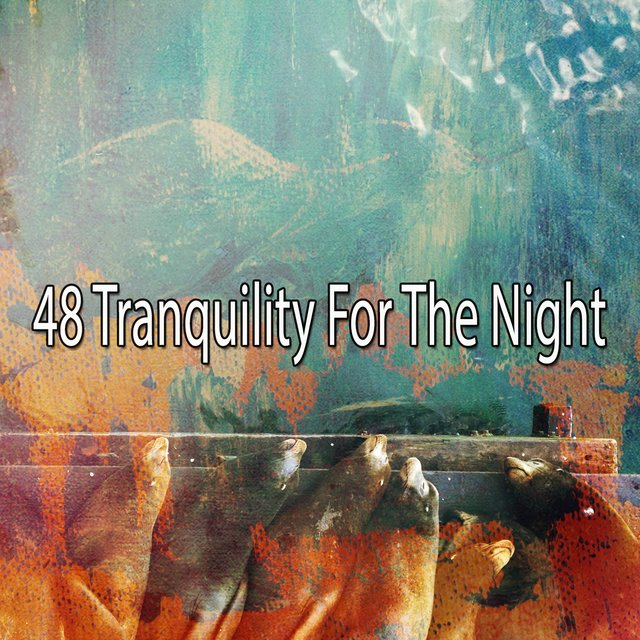 48 Tranquility for the Night