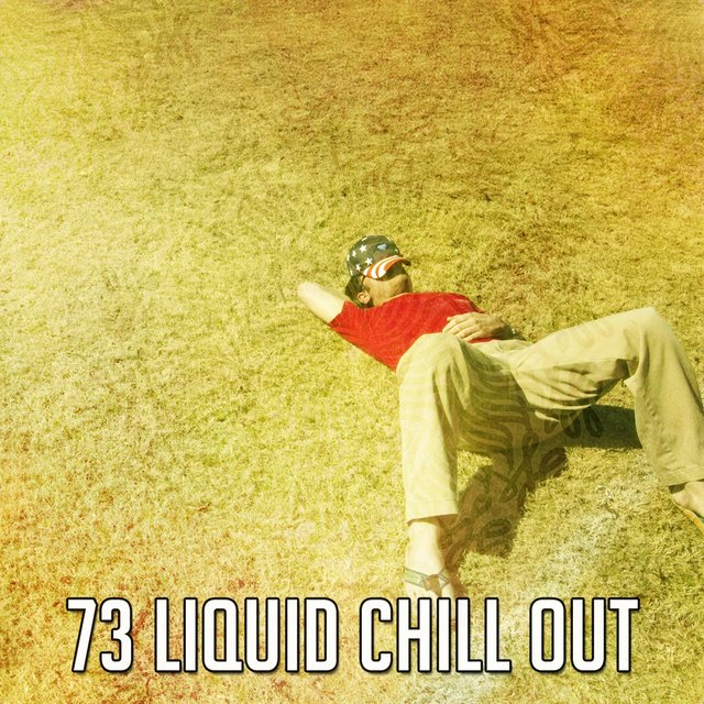 73 Liquid Chill Out