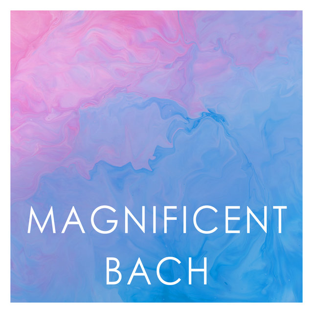 Magnificent Bach