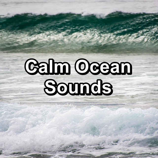 Calm Ocean Sounds