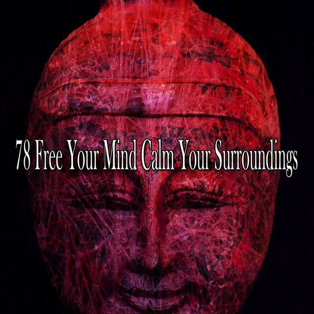 78 Free Your Mind Calm Your Surroundings