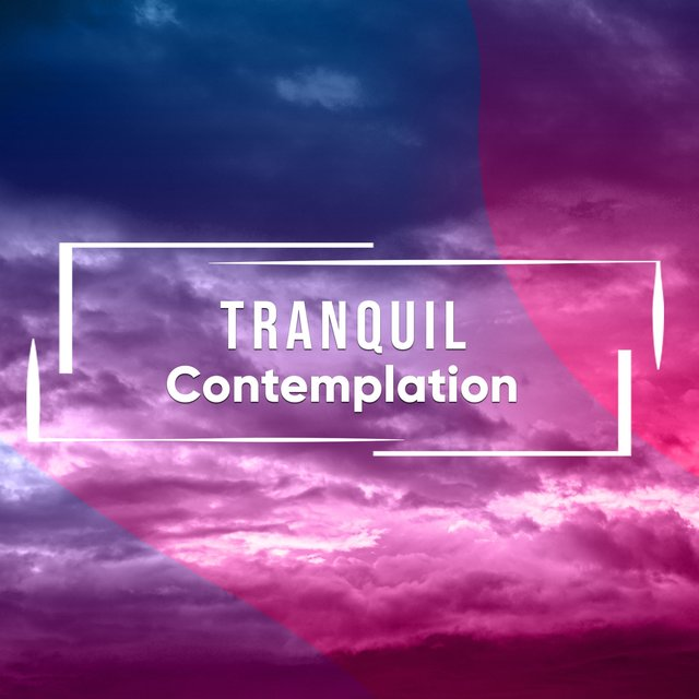 # 1 Album: Tranquil Contemplation