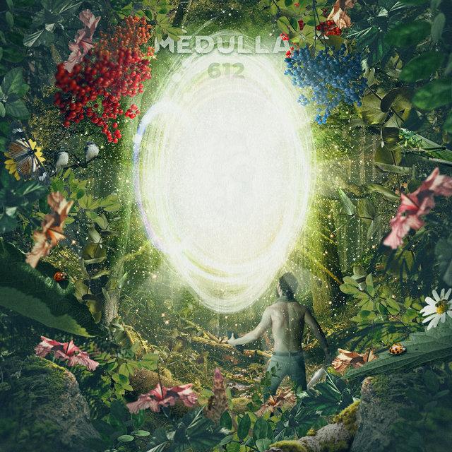 Cover art for album Mèdulla 612 by Juan D Arango, Pedro Acosta