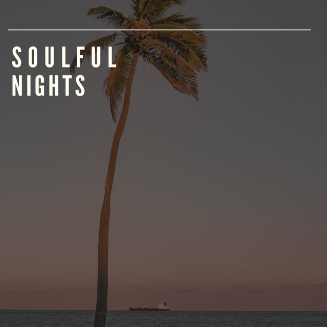 Soulful Nights