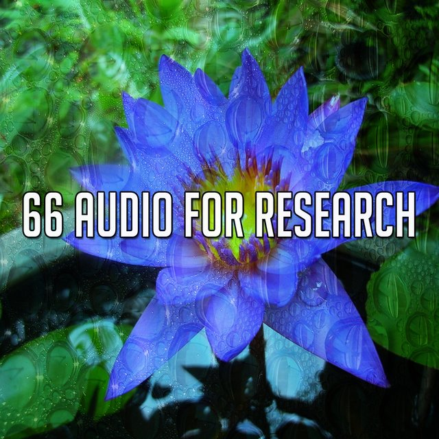 66 Audio for Research