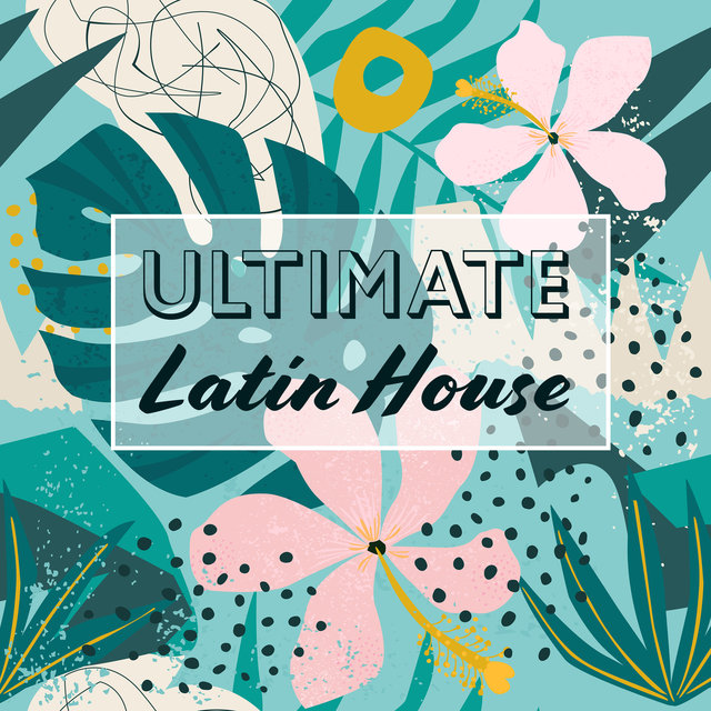 Ultimate Latin House: Brasil Tempo 2019, Zumba and Bachata, Sexual, Emotional Beats
