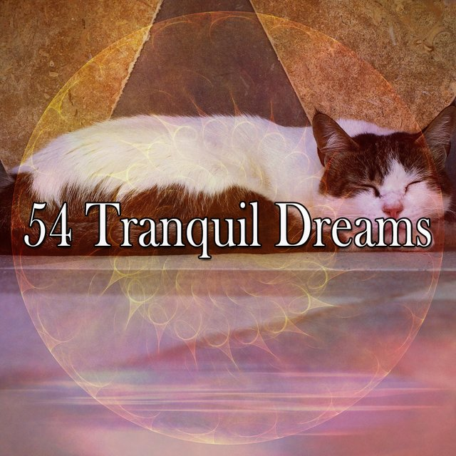 54 Tranquil Dreams