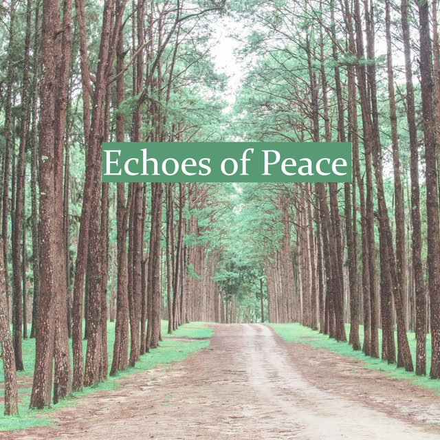 Echoes of Peace - New Age Music to Cure Insomnia, Relaxing Music, Zen, Sound Therapy with Nature Sounds, Relaxation & Meditation for Stress Relief, SPA & Wellness