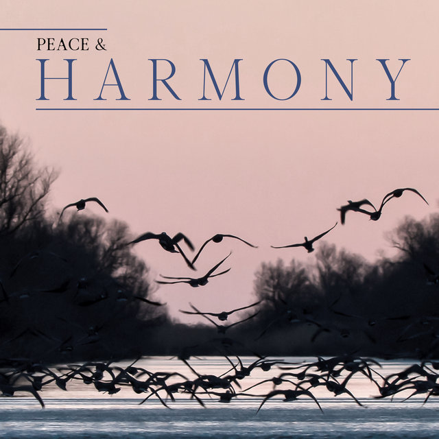Peace & Harmony - Beautiful Nature Sounds for Total Relax