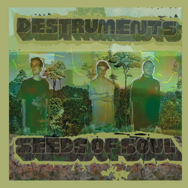Seeds of Soul