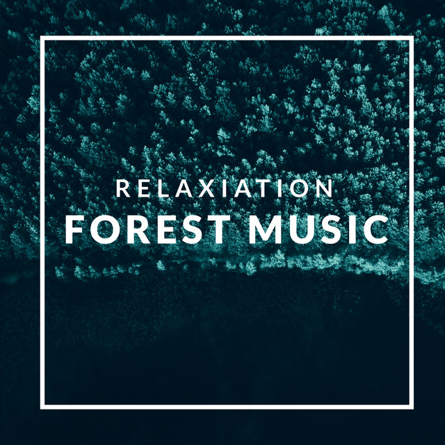 Relaxiation Forest Music – Birds, Water, Wind, Nature, Spring