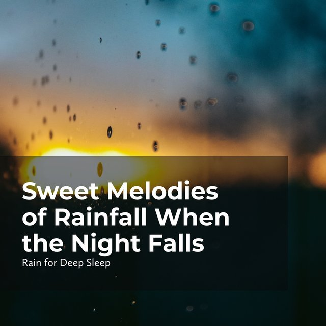 Sweet Melodies of Rainfall When the Night Falls