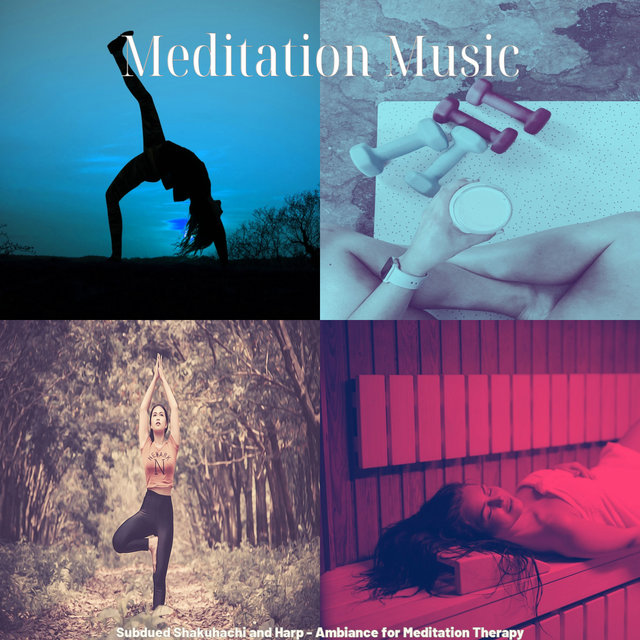 Subdued Shakuhachi and Harp - Ambiance for Meditation Therapy