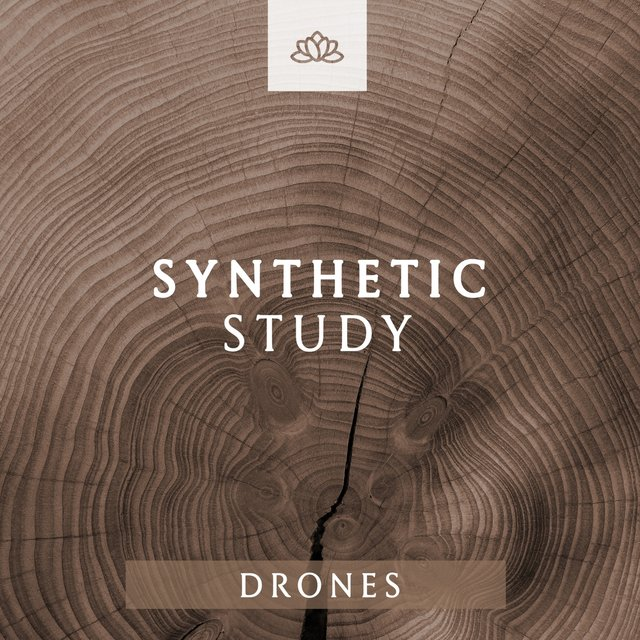 Synthetic Study Drones