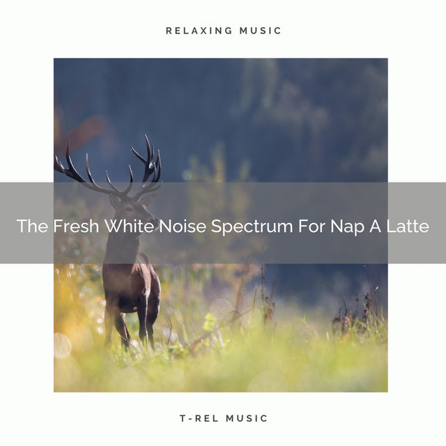The Fresh White Noise Spectrum For Nap A Latte