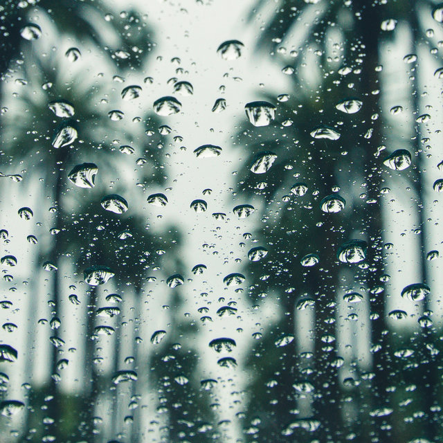 40 Relaxing Spring Rain Music Collection