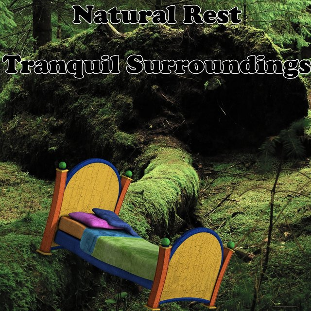 Natural Rest Tranquil Surroundings