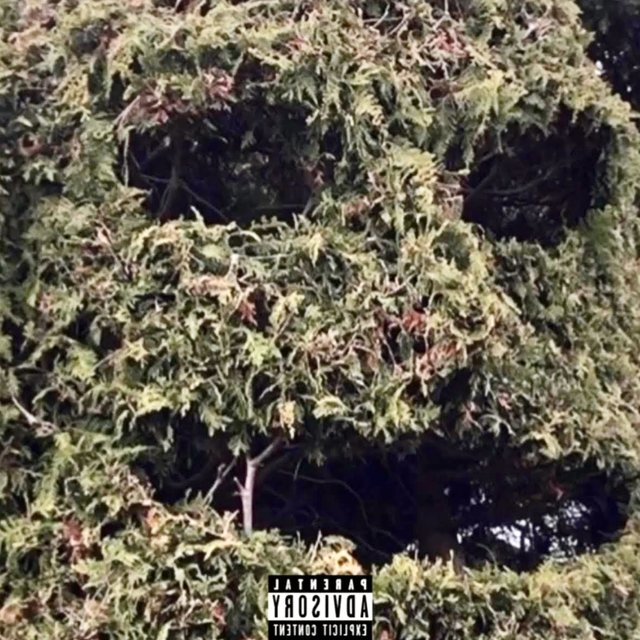 Cover art for album Grass Mask by Cise Greeny