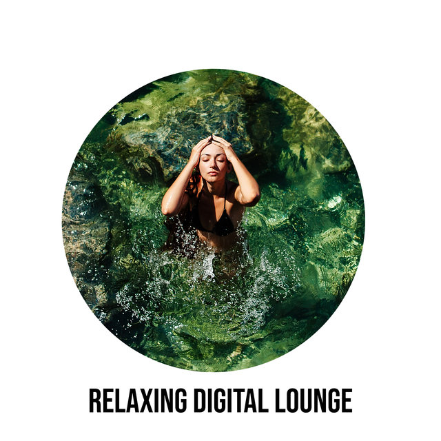 Relaxing Digital Lounge – Ambient Chillout Music Collection, Surrender, Chillax Session, Velvet Dreams, After Hours, Alone with Myself