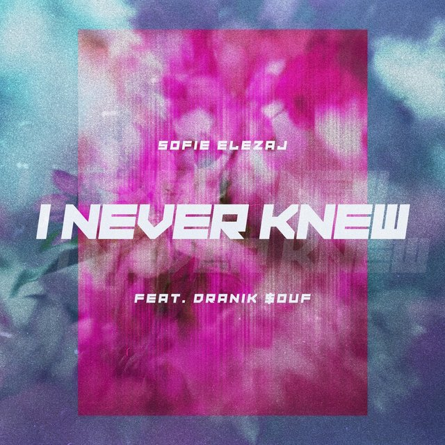I Never Knew (feat. Dranik Souf)