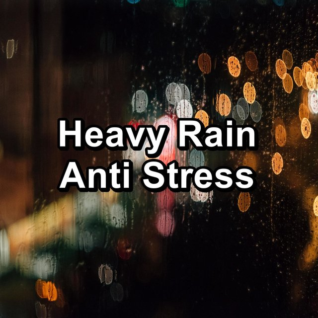 Heavy Rain Anti Stress