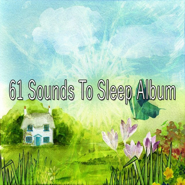 61 Sounds to Sleep Album