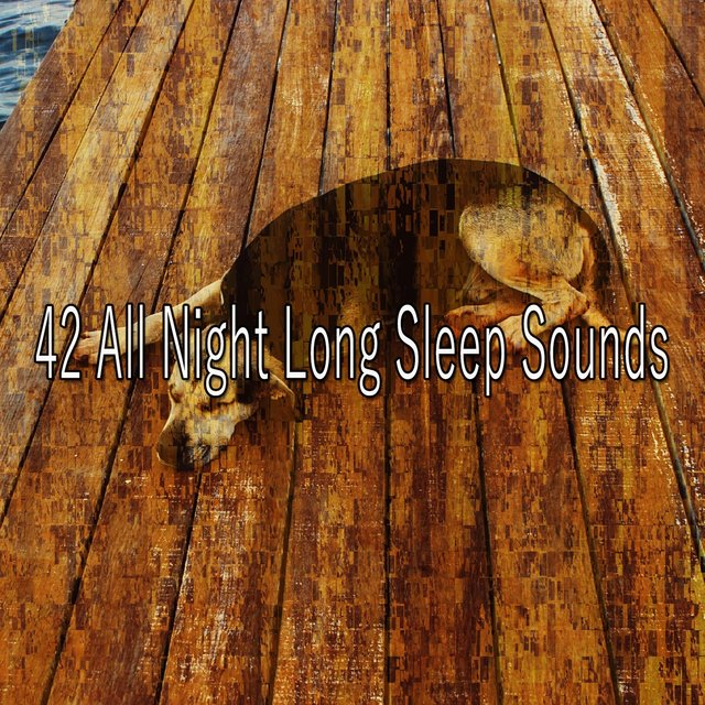 42 All Night Long Sleep Sounds