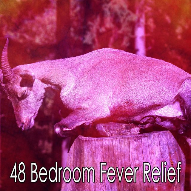 48 Bedroom Fever Relief